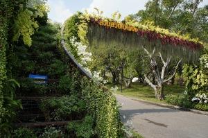 สะพานลอยต้นไม้ แต่ห้ามผ่านนะ