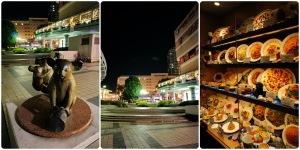 รอบๆมีห้างมีร้านอาหารเยอะนะ แต่ปิดเร็วประมาณทุ่มสองทุ่มก็ปิดละ เขาเลยว่าเมืองไทยอยู่สบาย อยากกินอะไรเมื่อไหร่ก็ได้ไง