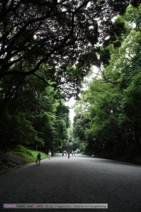 """ท่ามกลางเมืองที่วุ่นวายมีสวนป่าขนาดใหญ่ ต้นไม้กว่าหนึ่งแสนต้น ให้พักพิง ชอบสวนแบบนี้นะ ในไทยมักทำสนามหญ้ากับพุ่มไม้ต้นไม้เล็กๆหลอกวัวว่านี่คือสวนสาธารณะ/พื้นที่สีเขียวแล้ว มันร่มรื่นที่ไหนล่ะ - -"""""""
