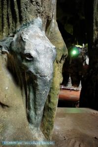 สลักหินหัวช้างตามหินงอกจริง สลักเพิ่มแค่ตากับหู ส่วนรูปที่เป็นเต่าหาไม่เจอ (ไม่รู้ว่ามีด้วยแหล่ะ)
