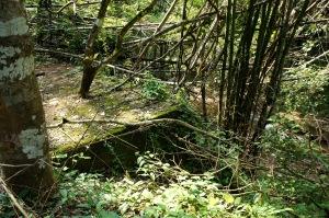 ส่วนร่องรอยสงครามที่นี่ก็สะพานรถไฟที่สร้างค้างไว้เมื่อสมัยนั้น