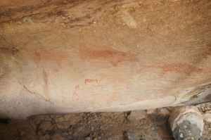 ถ้ำวัว มีลยเขียนรูปวัวของคนโบราณก่อนประวัติศาสตร์ชัดเจน