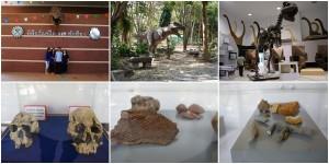 พิพิธภัณฑ์ไดโนเสาร์ภูเวียง ตอนไปเขาปิด ไว้ไปตอนที่เขาเปิดค่อยเขียนเป็นเรื่องแยก