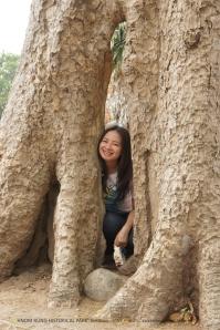 เด็กดอยในต้นไม้ใหญ่